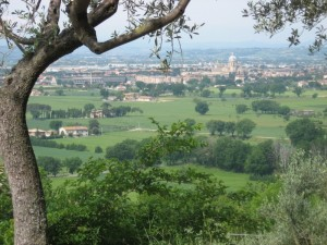 Umbria Assisi cropped